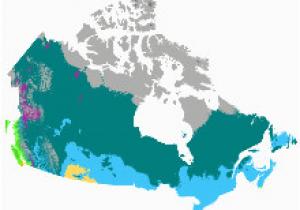 Canada Vegetation Map Kanada Wikipedia