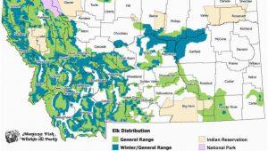 Colorado Elk Migration Map Elk Montana Field Guide