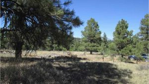 Colorado Land for Sale Map Pagosa Springs Colorado Vacant Land for Sale Coloproperty Com
