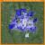 Crime Rate Map Columbus Ohio Columbus Oh Crime Rates and Statistics Neighborhoodscout