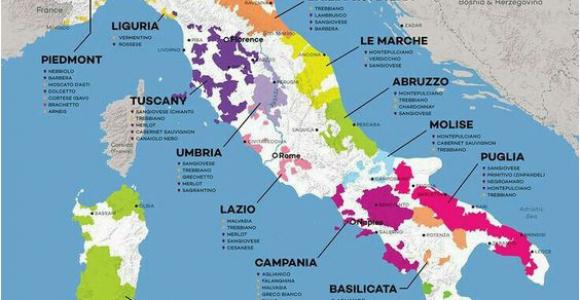 Food Map Of Italy Vinos Italia Wine Wine Italian Wine Wine Folly