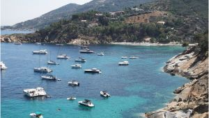 Giglio Italy Map Giglio island isola Del Giglio 2019 All You Need to Know before