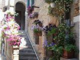 Grado Italy Map Die 94 Besten Bilder Auf Grado Degree Of A Polynomial County Seat