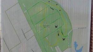 Map Of Schertz Texas Park Map Picture Of Crescent Bend Nature Park Schertz Tripadvisor