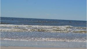 Map Of Texas Beaches Matagorda Beach 2019 All You Need to Know before You Go with