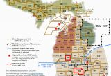 Michigan Dnr Hunting Maps Dnr Dmu Management Info