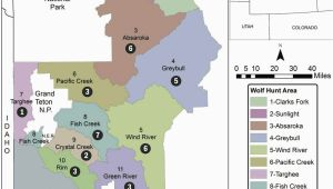 Minnesota Wolf Population Map Wyoming Sets Wolf Population Goal Of 160 Environmental