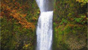 Multnomah Falls oregon Map Waterfall Hikes In the Columbia River Gorge Travel Pinterest