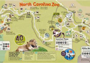 North Carolina Zoo Map 31 Perfect north Carolina Zoo Map ...