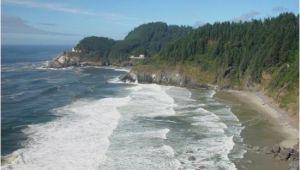 Oregon Coast Aquarium Map oregon Beach Bild Von Newport oregon Coast Tripadvisor