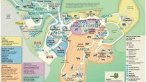 Oregon Zoo Map 17 Best oregon Zoo Images the Zoo Portland Zoo Zoos