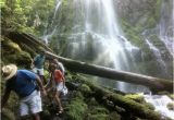 Proxy Falls oregon Map Lower Proxy Falls Picture Of Proxy Falls Sisters Tripadvisor