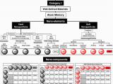 Roadmap Of Alabama Nanomaterials Classification Roadmap Download Scientific Diagram