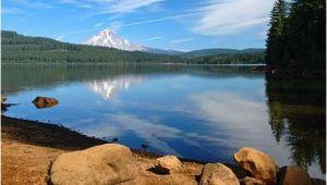 Timothy Lake oregon Map Timothy Lake oregon Best Camping Spot Good for Kayaking Swimming