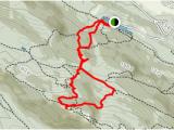 Trans Canada Trail Map Bc Mount Benson Loop British Columbia Canada Alltrails