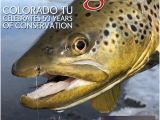 Trout Fishing In Tennessee Map High Country Angler Spring 2019 by High Country Angler issuu