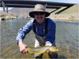 Trout Fishing In Tennessee Map Utah Pro Fly Fishing Park City 2019 All You Need to Know before