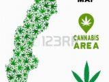 Weed Map Colorado Weed Leaf Template Hetero Co