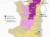 Wine Region France Map the Secret to Finding Good Beaujolais Wine Infografics