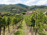 Wineries In Tuscany Italy Map Chianti Italy Travel Guide to Chianti Wine Region In Tuscany Italy