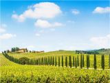 Wineries In Tuscany Italy Map Fun In Tuscany Chianti Wine tour 7 5 Hours Tuscany In 2019