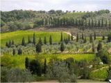 Wineries In Tuscany Italy Map Tuscan Vineyard tours Piombino Aktuelle 2019 Lohnt Es Sich