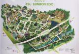 Zoo England Map Zsl London Zoo Aktuelle 2019 Lohnt Es Sich Mit Fotos